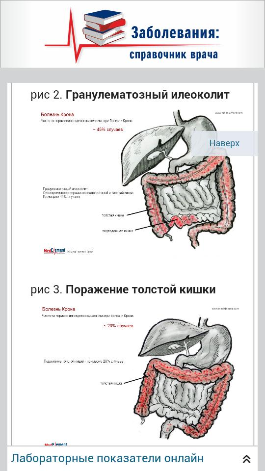 Справочник терапевта. Мобильное приложение