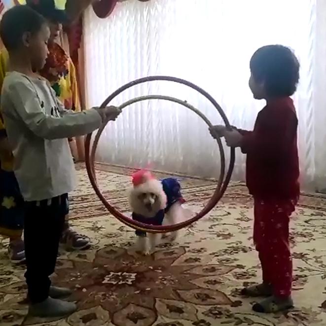 У нас был цирк!