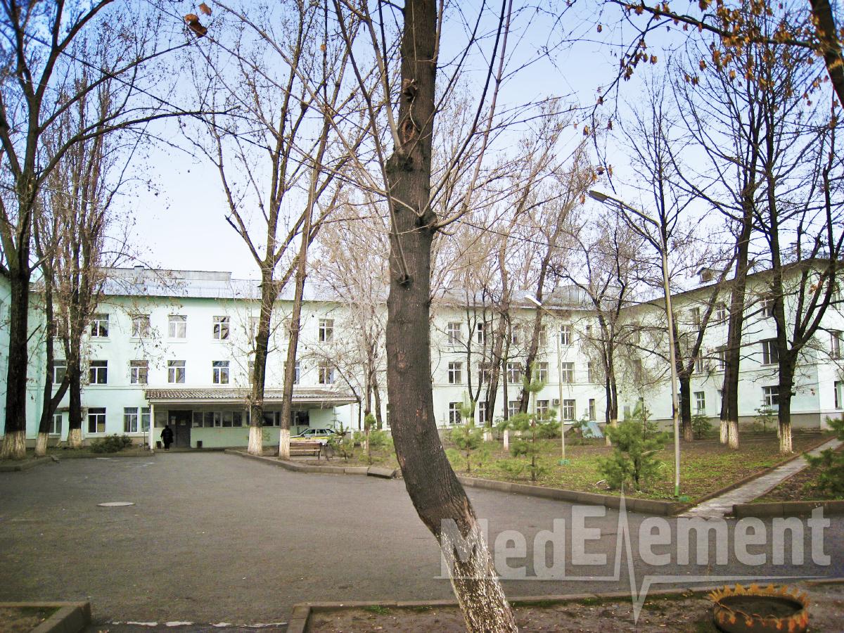 Ветеринарные клиники в смоленске на большой советской