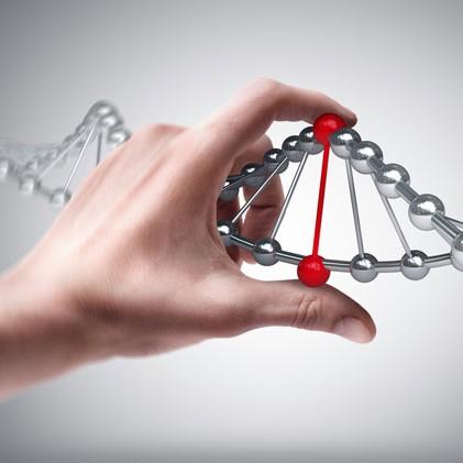 Выявление врожденной патологии - Microarray test