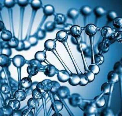 Хромосомный микроматричный анализ в ЦММ