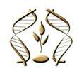Институт генетики и цитологии Национальной академии наук Беларуси
