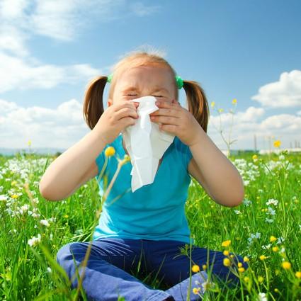 Check-up на аллергии