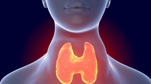 8 признаков проблем с щитовидной железой