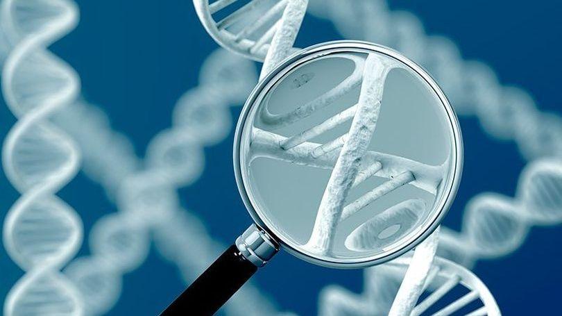 31 мая - 1 июня в Петербурге обсудят последние достижения науки в борьбе с генетическими заболеваниями